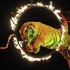 Цирки в Сосновоборске